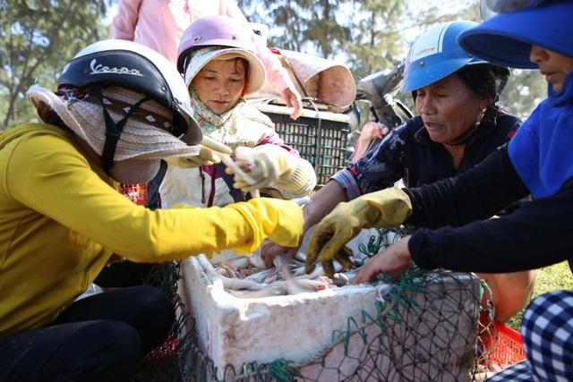 Ngư dân kiếm tiền triệu từ cá khoai những ngày cuối năm - 6