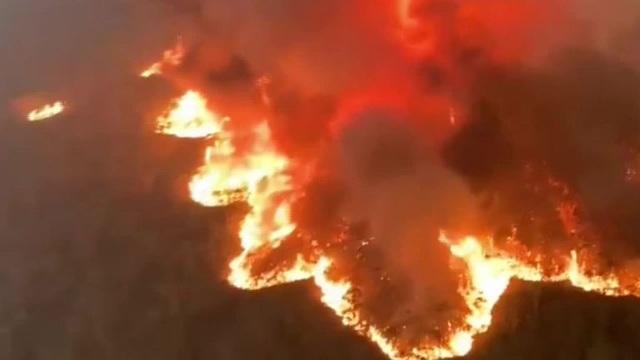 Thủ tướng Australia xin lỗi vì đi nghỉ dưỡng giữa lúc cháy rừng dữ dội - 3