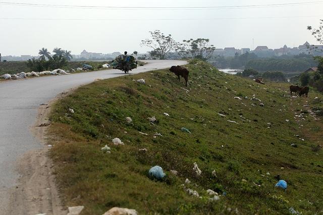 Báo động tình trạng ngập rác thải nhựa tại đê Hữu Hồng  - 13