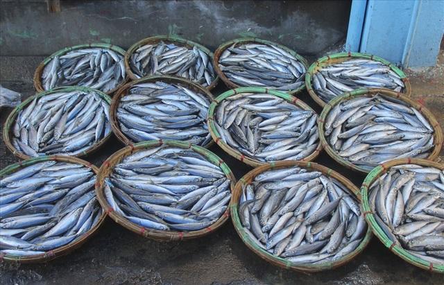 Độc đáo nghề hấp cá nuôi sống bao thế hệ - 10