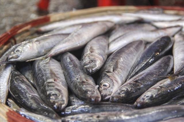 Độc đáo nghề hấp cá nuôi sống bao thế hệ - 4