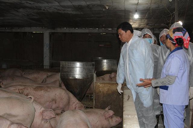 Găm hàng đẩy giá thịt lợn, Bộ trưởng cảnh báo gậy ông đập lưng ông - 1