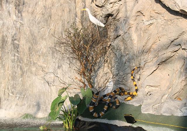 Chiêm ngưỡng hang đá đồ sộ được làm từ 8.000 cây tre - 6