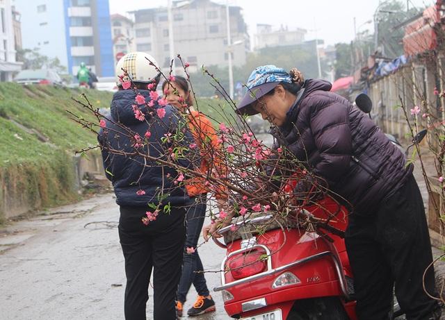 Dân Hà Nội chơi đào sớm, chi nửa triệu đồng cho 1 cành - 2