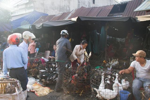 Đà Nẵng: Hơn 1.700 tỷ đồng dự trữ hàng hóa phục vụ Tết Nguyên đán - 2