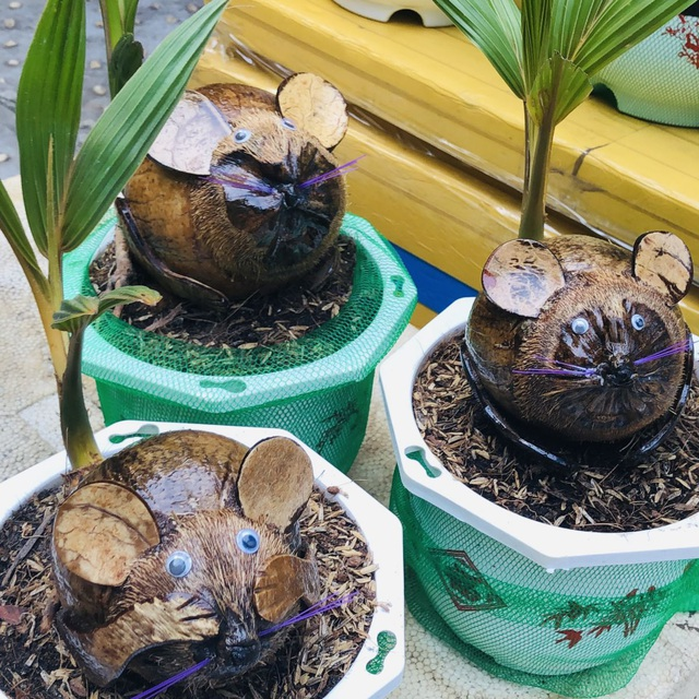 """Bonsai dừa """"kỳ lạ"""" có hình chuột, làm ngàn cây vẫn """"cháy"""" hàng dịp Tết - 2"""
