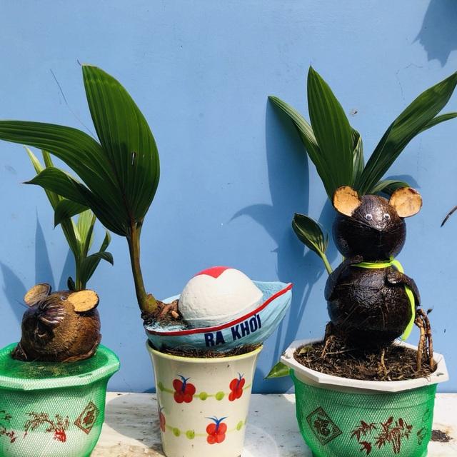 """Bonsai dừa """"kỳ lạ"""" có hình chuột, làm ngàn cây vẫn """"cháy"""" hàng dịp Tết - 3"""