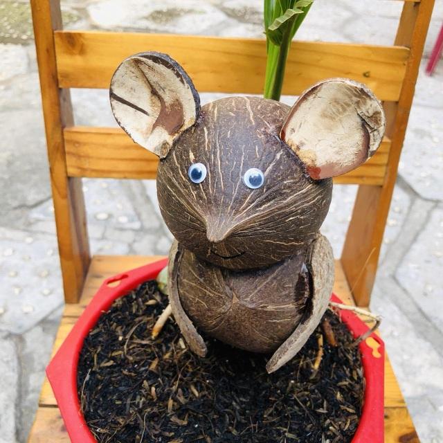 """Bonsai dừa """"kỳ lạ"""" có hình chuột, làm ngàn cây vẫn """"cháy"""" hàng dịp Tết - 5"""