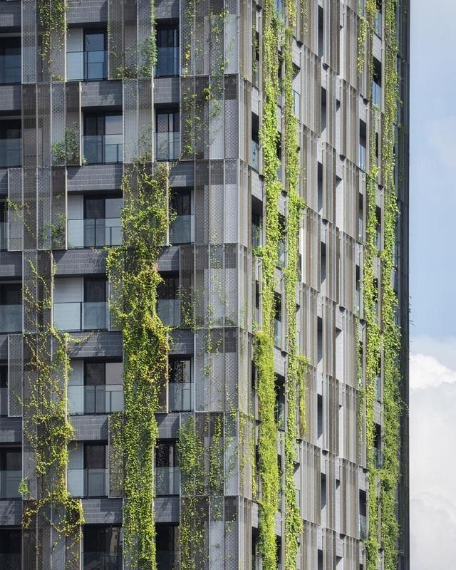 """Khu chung cư """"độc, lạ"""" với rừng cây xanh phủ từ tầng 1 lên tầng thượng - 2"""