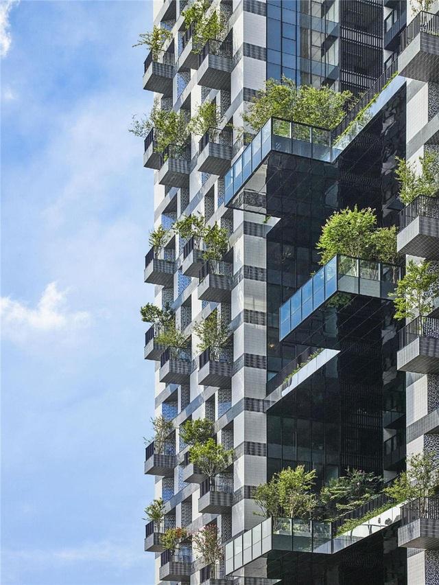 """Khu chung cư """"độc, lạ"""" với rừng cây xanh phủ từ tầng 1 lên tầng thượng - 8"""