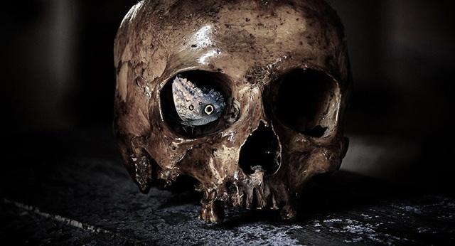 Cấy ghép đầu người sẽ trở thành hiện thực vào năm 2030 - 1