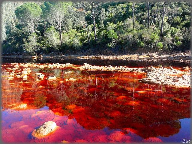 Dòng sông kỳ lạ với nước đỏ như màu máu - 1
