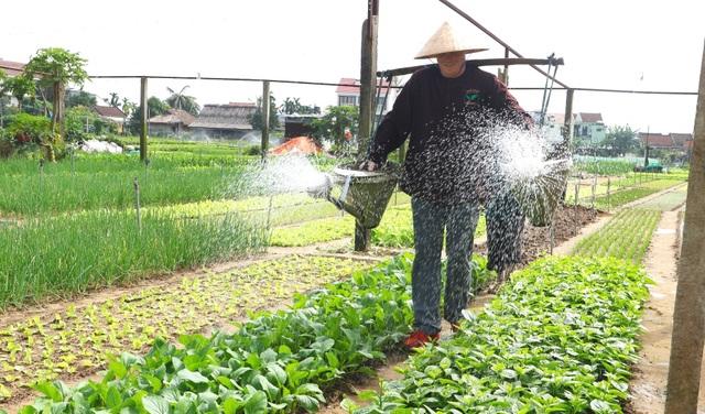 Quảng Nam: Check-in những điểm vui chơi trong kỳ nghỉ Tết dương lịch - 8