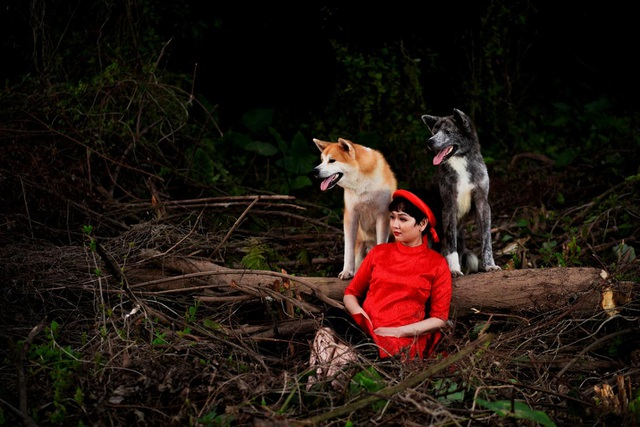 Dogily Petshop - Mang niềm vui thú cưng đến mỗi gia đình