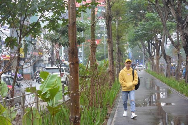 Hà Nội: Nhiều tuyến phố được cải tạo, chỉnh trang, nâng cấp - 10