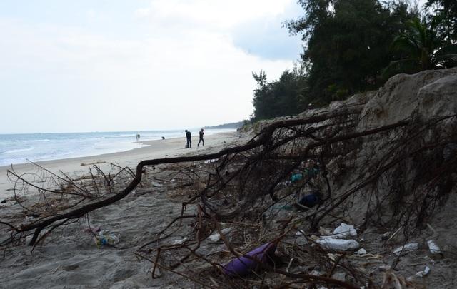 Sạt lở bất thường tại bãi biển đẹp nhất Quảng Ngãi - 1