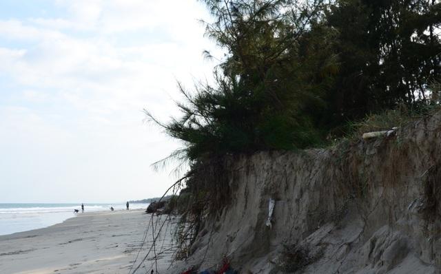 Sạt lở bất thường tại bãi biển đẹp nhất Quảng Ngãi - 4