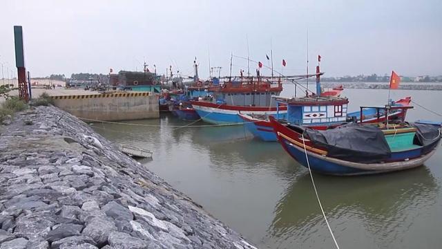 """Thiếu âu thuyền, gần 1.200 tàu cá """"chật vật"""" tìm nơi neo đậu - 1"""