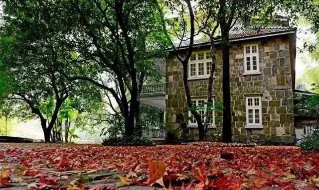 Người đàn ông biến ngôi nhà ma ám bỏ hoang thành dinh thự như tranh vẽ - 10