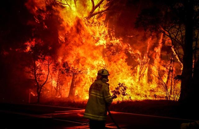 Tranh cãi về pháo hoa đêm giao thừa tại Australia - 2