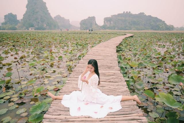 Ngỡ ngàng mùa sen giữa trời đông, lau đẹp như tranh ở Ninh Bình - 1