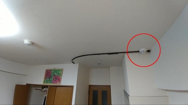 Giật mình mức án kẻ đánh cắp dữ liệu camera, tung clip nóng sẽ phải chịu! - 1
