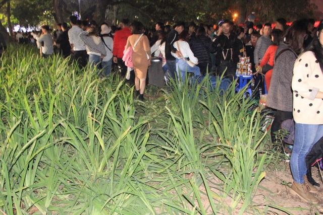 Vườn hoa ven Hồ Gươm bị giẫm nát sau màn pháo hoa chào năm mới - 8