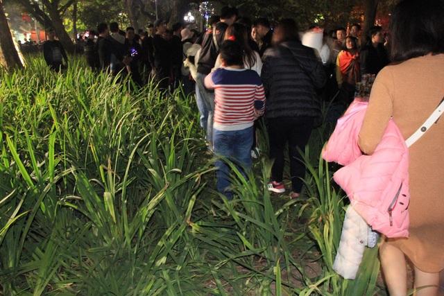 Vườn hoa ven Hồ Gươm bị giẫm nát sau màn pháo hoa chào năm mới - 6