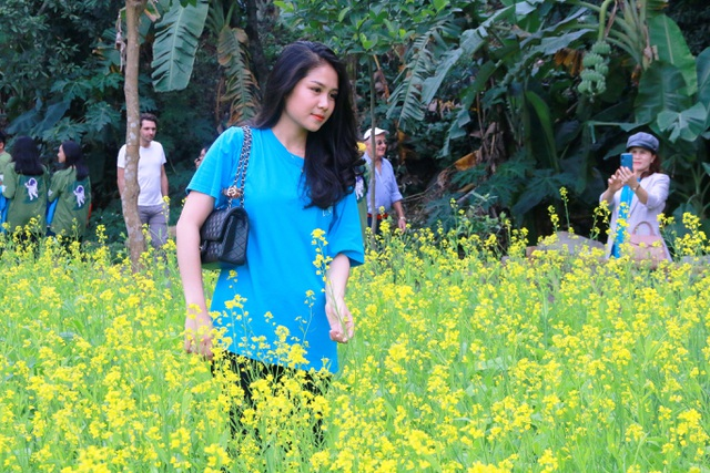 Vườn hoa cải rực vàng đẹp mê hồn khiến du khách nao lòng ở Thung Nham - 6