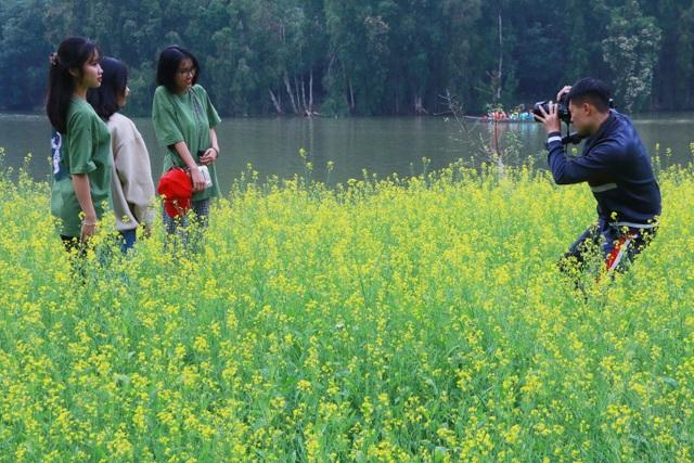 Vườn hoa cải rực vàng đẹp mê hồn khiến du khách nao lòng ở Thung Nham - 12