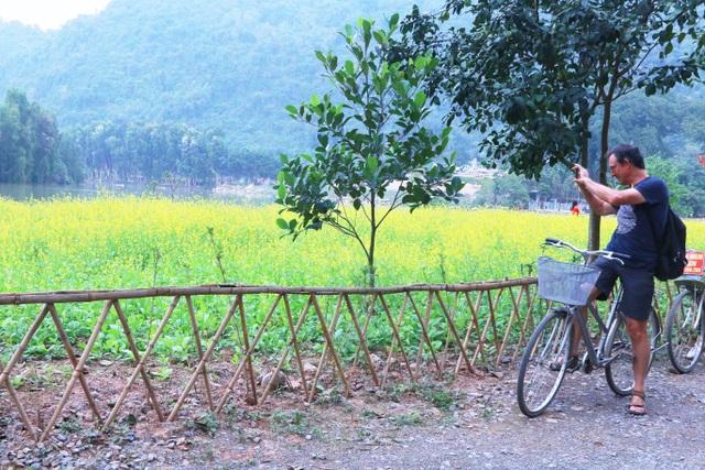 Vườn hoa cải rực vàng đẹp mê hồn khiến du khách nao lòng ở Thung Nham - 13