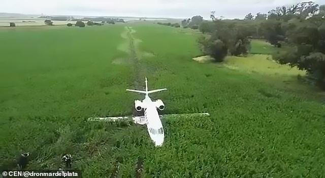 Máy bay Argentina mài bụng xuống đất do động cơ trục trặc - 4