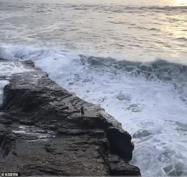 Khoảnh khắc sóng biển cuốn phăng người đàn ông tại Mỹ - 1