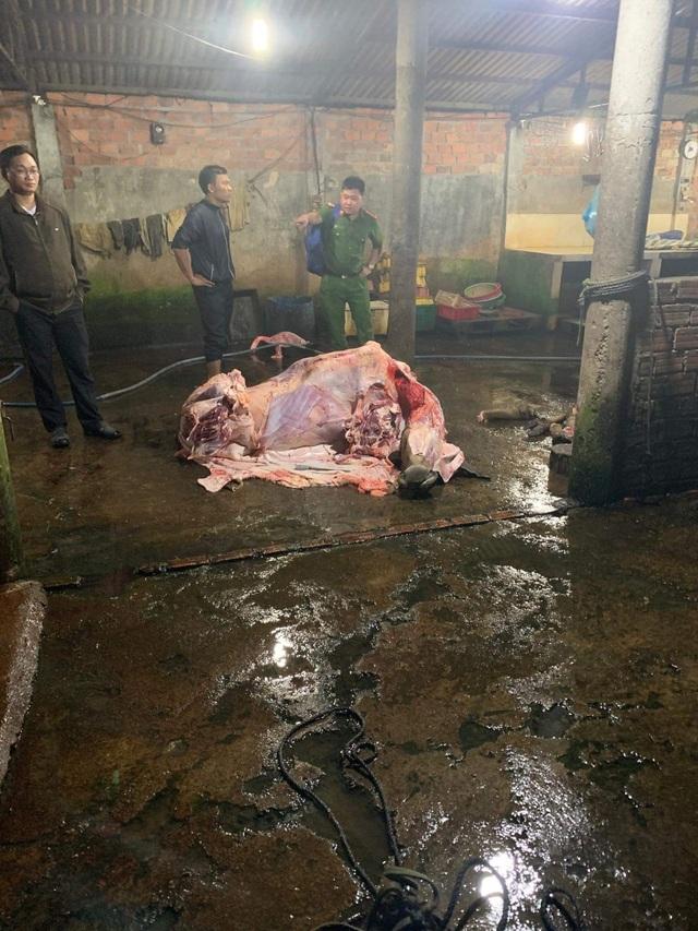 Bắt quả tang nhiều cơ sở bơm nước vào bò trước khi giết mổ - 2