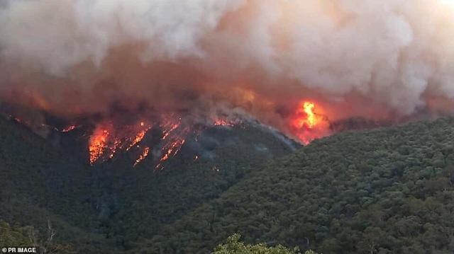 Thủ tướng Australia bị mắng mỏ, từ chối bắt tay vì cháy rừng hoành hành - 8