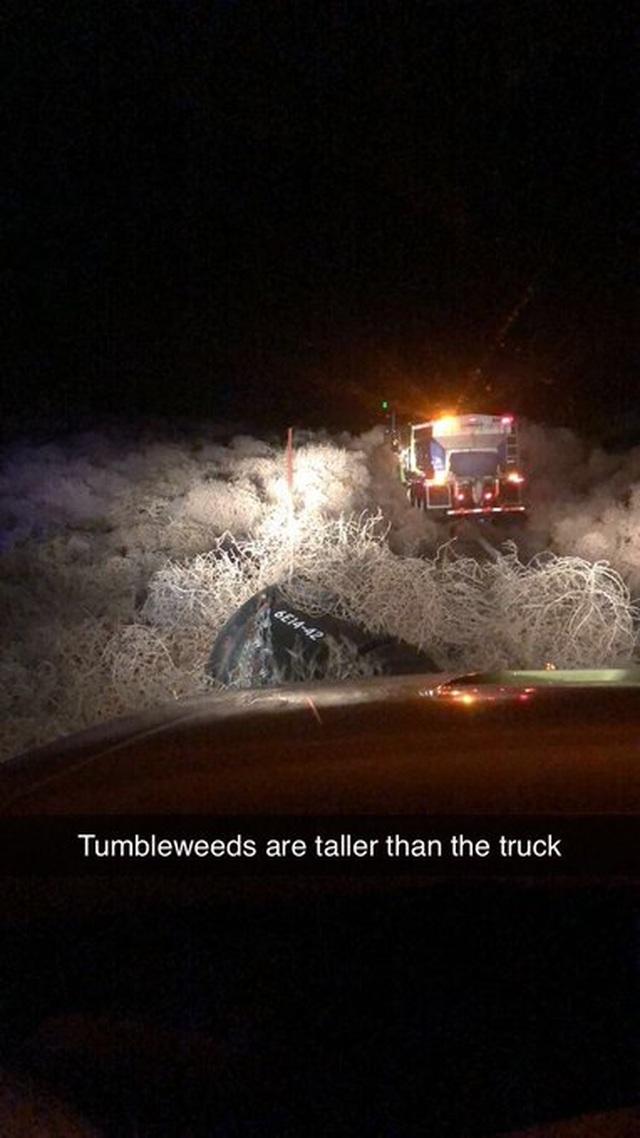 Đường cao tốc tắc nghẽn nhiều giờ vì cỏ bao vây xe tải - 3