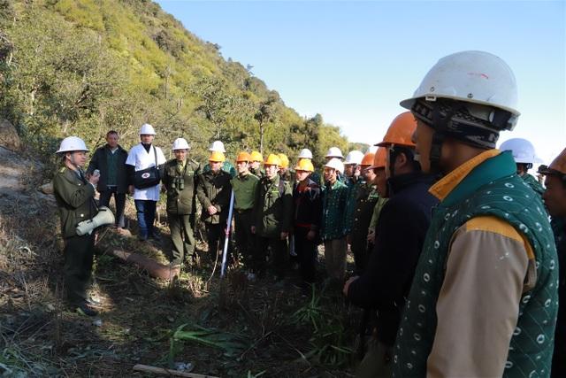 Lào Cai: Bảo vệ rừng song hành cùng phát triển du lịch - 2