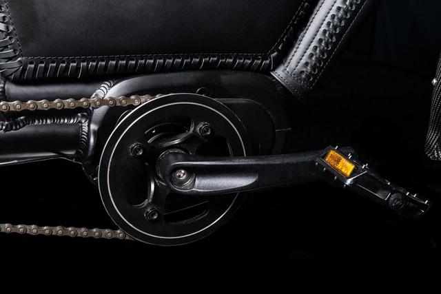 Chất như xe đạp điện Flying Huntsman Type 77 - 13