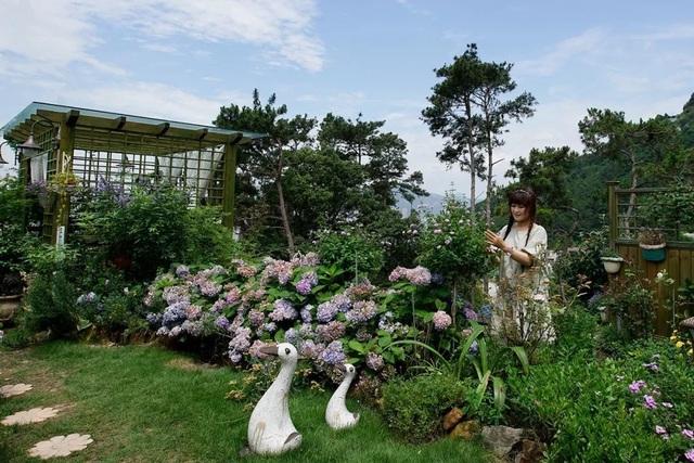 Rời thành phố chật chội, người phụ nữ về quê làm vườn và tạo nên kiệt tác đẹp không ngờ - 1