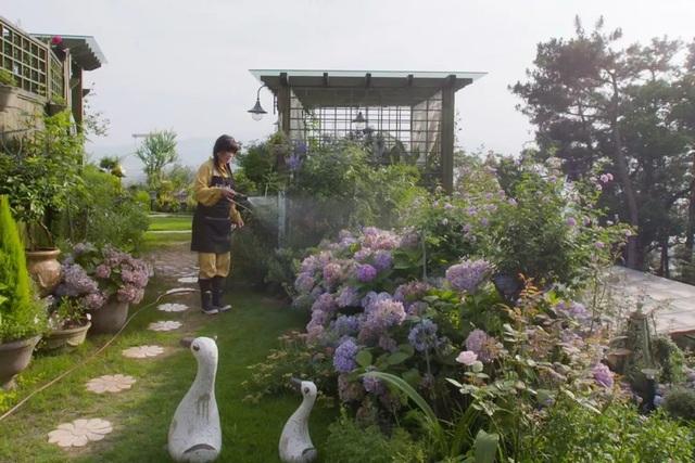 Rời thành phố chật chội, người phụ nữ về quê làm vườn và tạo nên kiệt tác đẹp không ngờ - 4