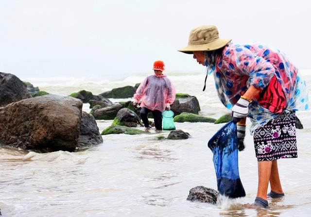 Vớt rong biển, người dân làng chài Nam Ô thu nhập tiền triệu mỗi ngày - 1