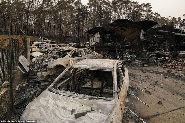 """400 triệu động vật bị thiêu hủy, Australia """"gồng mình"""" chiến đấu với cháy rừng - 13"""