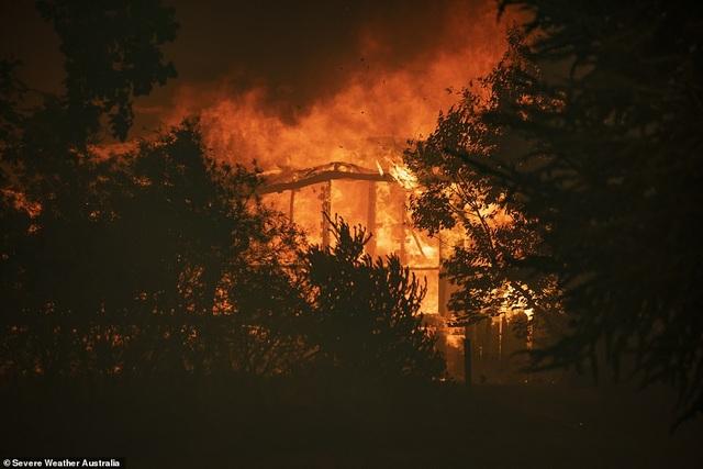 """400 triệu động vật bị thiêu hủy, Australia """"gồng mình"""" chiến đấu với cháy rừng - 11"""