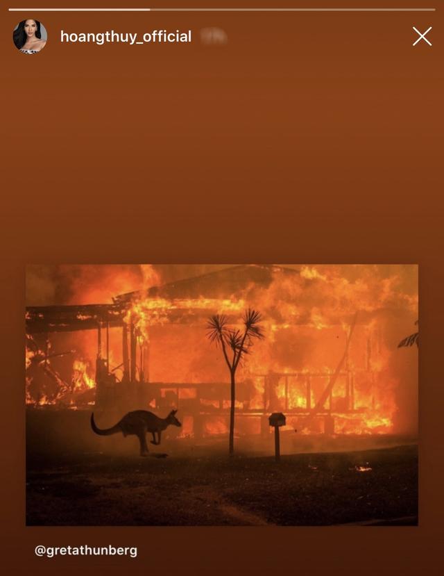 Ám ảnh đại thảm hoạ cháy rừng, dàn sao Việt nguyện cầu cho nước Úc - 6