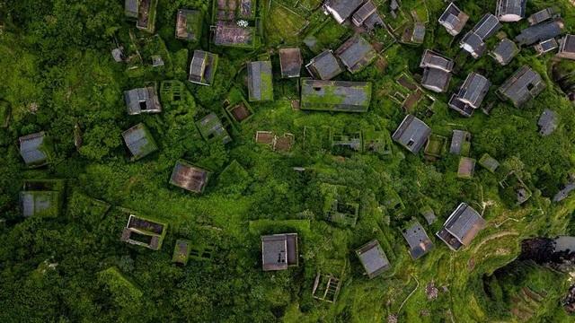"""Ngôi làng bỏ hoang bất ngờ gây """"sốt"""" bởi những nhà cây đẹp mê mẩn như cổ tích - 1"""