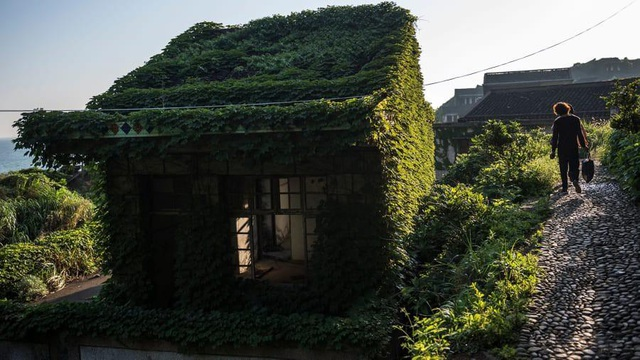 """Ngôi làng bỏ hoang bất ngờ gây """"sốt"""" bởi những nhà cây đẹp mê mẩn như cổ tích - 7"""