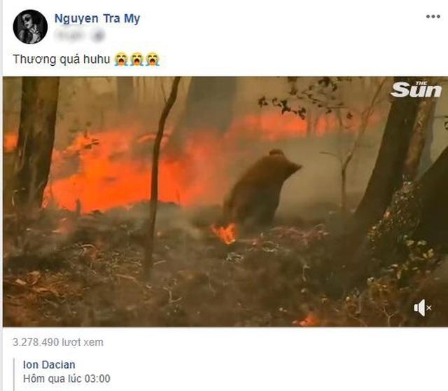 Ám ảnh đại thảm hoạ cháy rừng, dàn sao Việt nguyện cầu cho nước Úc - 8