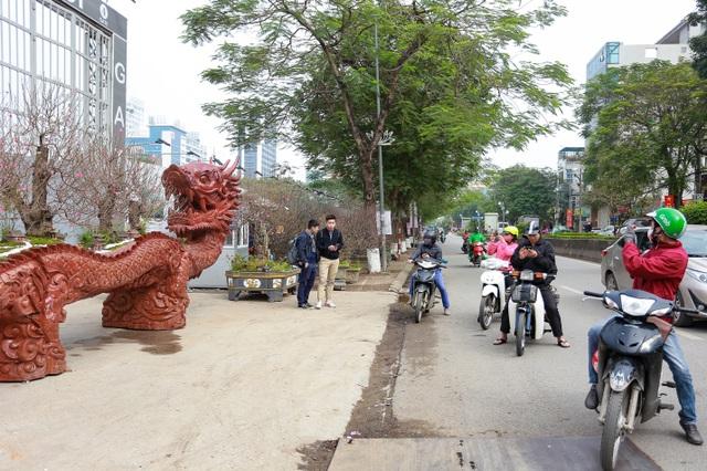 """Chậu đào """"khổng lồ"""" hình rồng ôm núi giá 1 tỷ đồng ở Hà Nội có gì đặc biệt? - 3"""