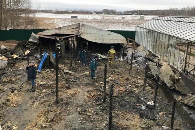 Cháy tại tỉnh Moscow khiến 8 người thiệt mạng, nghi có người Việt - 1