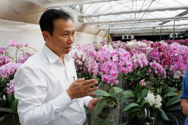 Hành trình hơn một thập kỷ với khát vọng đưa hoa Việt Nam vươn tầm thế giới của các nhà khoa học - 2